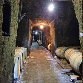Canfranero chardonnay